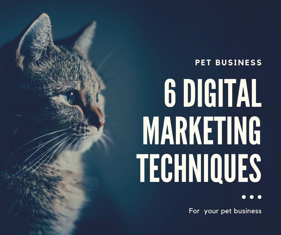 pet business digital marketing
